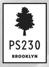 PS 230 Brooklyn